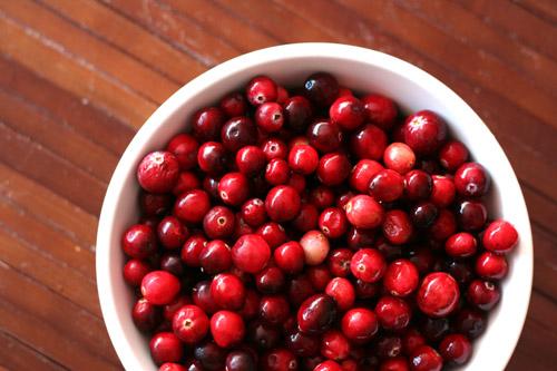 cranberries web