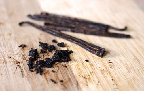 vanilla bean and seeds web