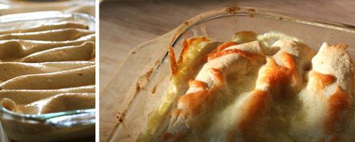 creamy chicken enchiladas web