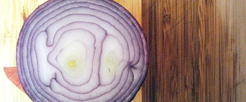onion web