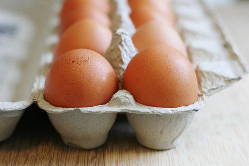 carton of eggs web