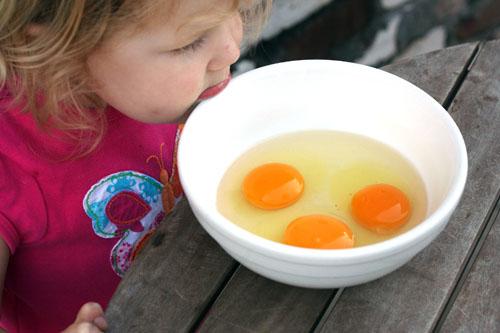fresh eggs yolks web