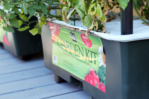 EarthBox Garden Kit web