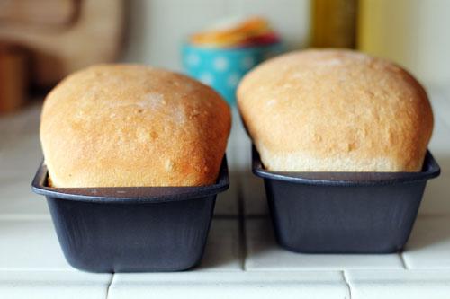 homemade bread morning web