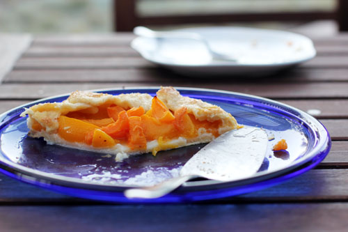 apricot peach galette last shot | thisweekfordinner.com