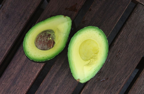 collection of great avocado recipes | thisweekfordinner.com