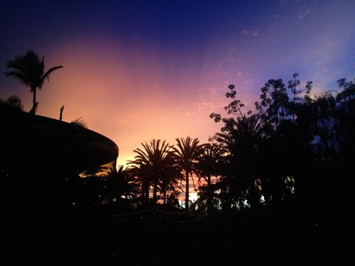 san diego nighttime zoo | thisweekfordinner.com