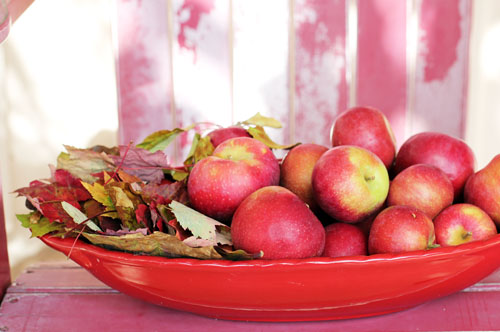 NH macintosh apples | thisweekfordinner.com
