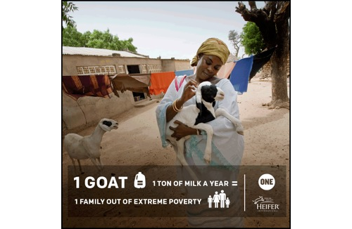 one and heifer international partnership | thisweekfordinner.com