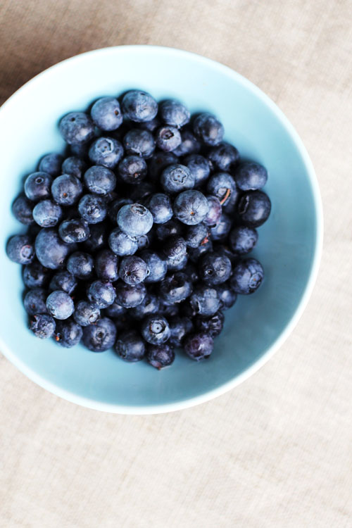 beautiful blueberries from @janemaynard