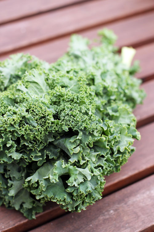 call for recipes: kale recipe roundup from @janemaynard