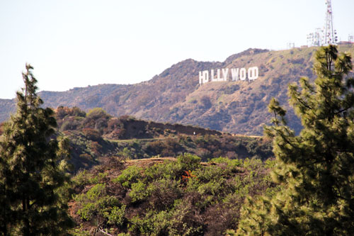 hollywood sign from griffith observatory by @janemaynard