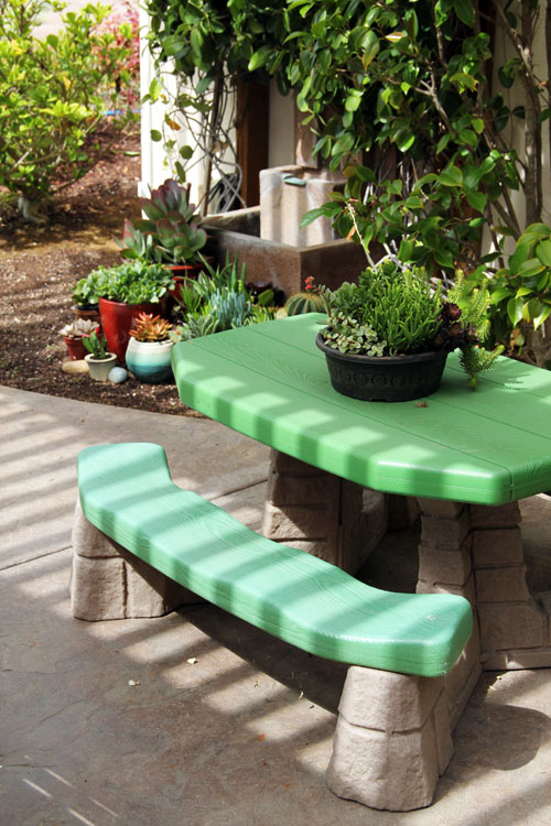 succulents for patio makeover by @janemaynard