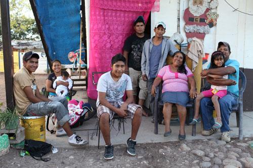 Divemex family
