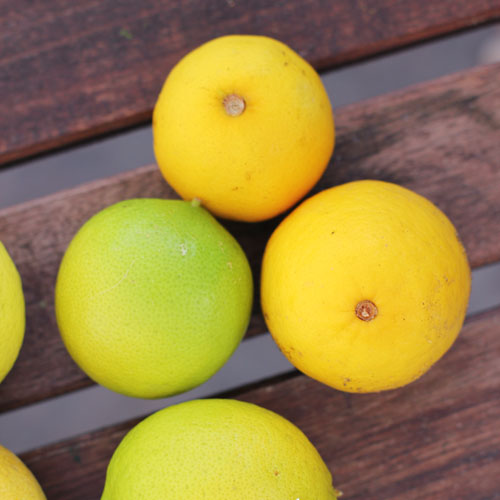 why you need a lemon press from @janemaynard | pictured: bearss limes