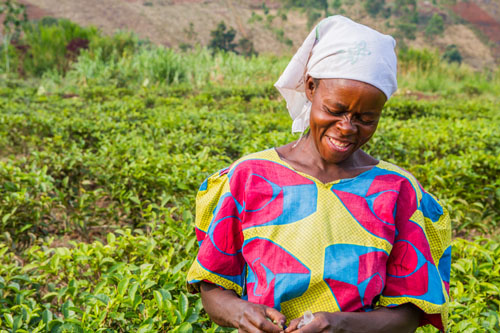 Komuhendo Jacqueline, Fair Trade Tea Farmer from Uganda #fairmoms