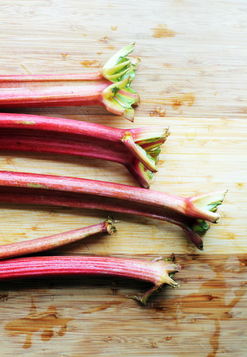 rhubarb for simple syrup by @janemaynard