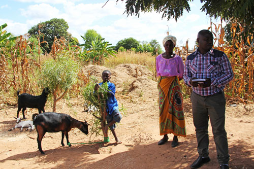 snapshots from malawi: the work of heifer international #oneheifer