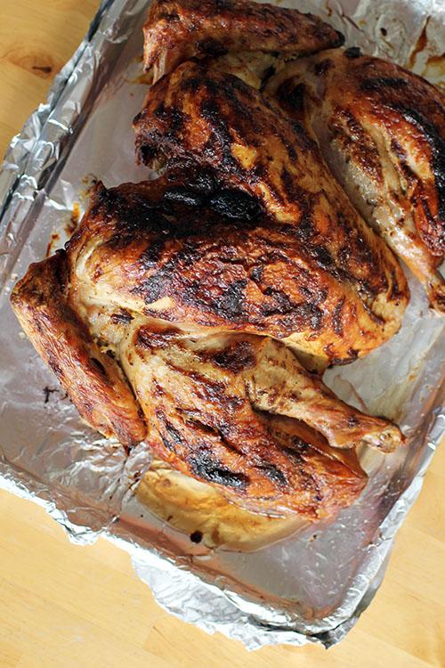 how to perfectly roast a turkey by @janemaynard | spatchcock + dry brine + roast with mayo