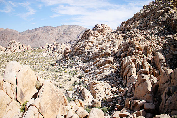 The Ultimate Car Camping Checklist from @janemaynard | Joshua Tree National Park