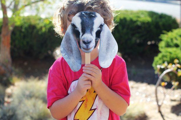 Giving Tuesday #GoatSquadGoals from @janemaynard