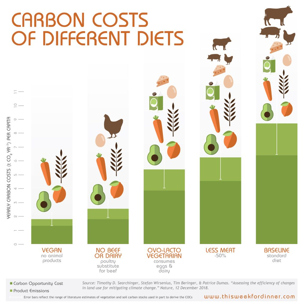 Carbon Costs of Different Diets